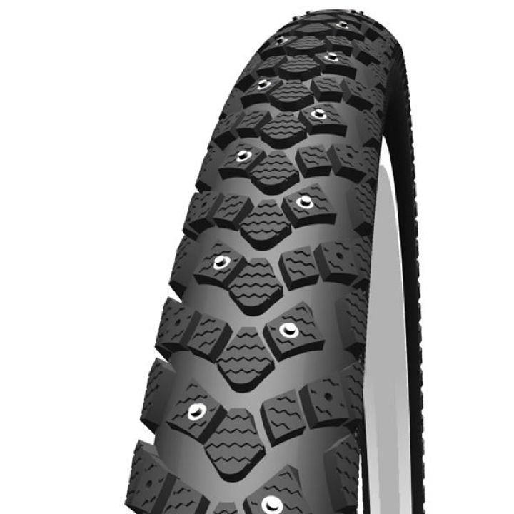 Schwalbe Winter Active